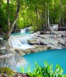 lasów tropikalnych wodospadu Zdjęcie Royalty Free