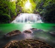 lasów tropikalnych wodospadu Zdjęcia Royalty Free