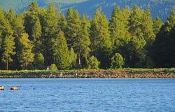las 6 lake Obrazy Royalty Free