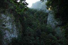 Las Obrazy Stock