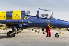 Las abejas bálticas Jet Team con aero- L-39 Albatros acepillan la situación en una pista Imagenes de archivo