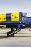 Las abejas bálticas Jet Team con aero- L-39 Albatros acepillan la situación en una pista Imágenes de archivo libres de regalías
