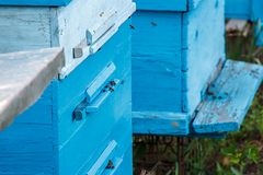 Las abejas en un colmenar vuelan en sus pistas de las casas fotos de archivo