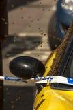 Las abejas pululan sobre un coche Foto de archivo