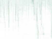 Las - abstrakcjonistyczny impresjonujący rozmyty tło obrazy stock