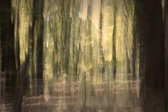 las abstrakcyjne Zdjęcie Stock