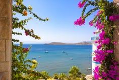 Las aguas azules claras y las flores hermosas se pueden ver más allá del Lig Fotos de archivo