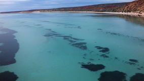 Las aguas azules de la bahía del tiburón metrajes