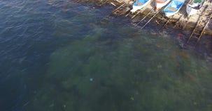 Las aguas frías del Mar Negro del Pomorie aúllan en Bulgaria almacen de metraje de vídeo