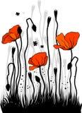 Las amapolas stock de ilustración