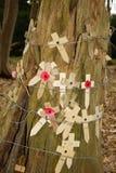 Las amapolas en un árbol con el alambre de púas Flandes colocan Foto de archivo