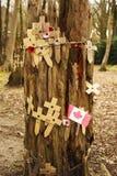 Las amapolas en un árbol con el alambre de púas Flandes colocan Imagenes de archivo