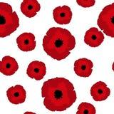 Las amapolas rojas del stylization inconsútil del estampado de flores florecen grande y pequeño en blanco Imagen de archivo