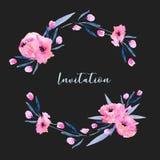 Las amapolas rosadas de la acuarela y los pequeños wildflowers enrruellan, mano dibujada aislada en un fondo oscuro Foto de archivo libre de regalías