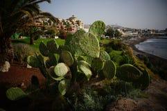 Las Americas de Tenerife Europa 2015 Foto de Stock Royalty Free