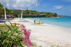 Las Antillas, el Caribe, Antigua, bahía larga, playa y gatos de Hobie Foto de archivo