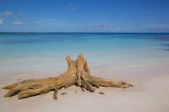 Las Antillas, el Caribe, Antigua, bahía larga, vista de la bahía larga y playa Foto de archivo