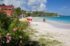Las Antillas, el Caribe, Antigua, bahía larga, vista de la bahía larga y playa Imagenes de archivo