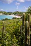 Las Antillas, el Caribe, Antigua, bahía larga, vista de la bahía larga y playa Imagen de archivo libre de regalías