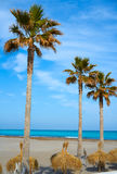 Las Arenas Malvarrosa beach in Valencia. Palm trees and sunroof Stock Photos