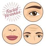 Las arrugas faciales de la mujer joven preocupan para el ejemplo anti del vector de la crema del proceso de la arruga stock de ilustración