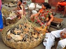 Las aves de corral vivas vendieron en el borde de la carretera en Kolkata, la India Imágenes de archivo libres de regalías