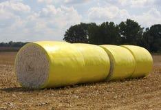 Las balas de algodón alinean un campo Imagen de archivo