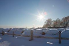 Las balas de heno en un invierno colocan debajo de la nieve pajares en la granja foto de archivo
