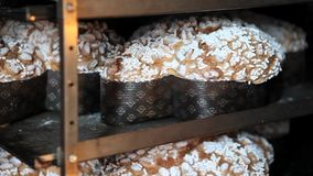 Las bandejas de palomas de las tortas de Pascua cuecen en el horno almacen de metraje de vídeo