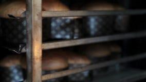 Las bandejas de palomas de las tortas de Pascua cuecen en el horno almacen de video
