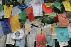 Las banderas del rezo fueron colgadas en árboles en el campo cerca de Paro (Bhután) Foto de archivo