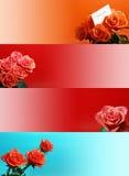 Las banderas del Web con se levantaron Imagen de archivo libre de regalías