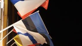 Las banderas internacionales y de la especialidad coloridas están agitando almacen de video