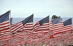 Las banderas vuelan para las víctimas de 9/11 de los attacts Imagen de archivo libre de regalías