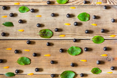 Las bayas de Aronia ennegrecen chokeberry, los pétalos del calendula y las hojas en fondo de madera en estilo rústico imagen de archivo libre de regalías