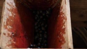 Las bayas de uvas fallan abajo