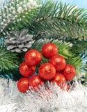 Las bayas decorativas y la malla del Año Nuevo. La vida todavía del Año Nuevo Fotografía de archivo