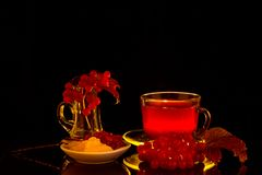 Las bayas del Viburnum y la bebida roja en el contorno se encienden Imágenes de archivo libres de regalías