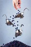 Las bayas que caen Foto de archivo