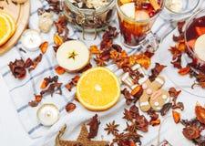 Las bebidas calientes - té de la fruta Foto de archivo libre de regalías