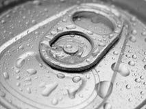 Las bebidas pueden rematar Foto de archivo libre de regalías