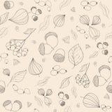 Las bellotas de la caída, el serbal y las bayas dibujados mano del escaramujo, tansy florecen Foto de archivo libre de regalías