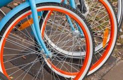 Las bicicletas coloridas para el alquiler se colocan en fila Imagen de archivo libre de regalías