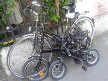 Las bicis de la familia Imagen de archivo libre de regalías