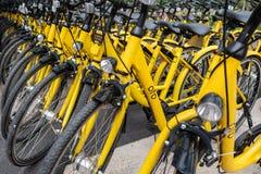 Las bicis de Ofo se parquean en el lado del camino imágenes de archivo libres de regalías