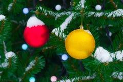 Las bolas amarillas y rojas de la Navidad en abeto ramifican en nieve Navidad Fotos de archivo libres de regalías