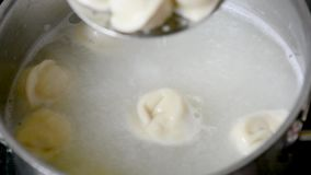 Las bolas de masa hervida de la carne, raviolis hirvieron en un cazo con las especias almacen de metraje de vídeo