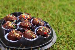 Las bolas del chocolate en la tierra Fotografía de archivo