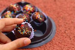 Las bolas del chocolate en la tierra Foto de archivo libre de regalías