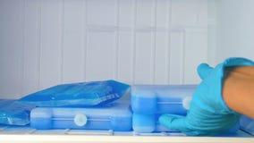 Las bolsas de hielo en el congelador metrajes